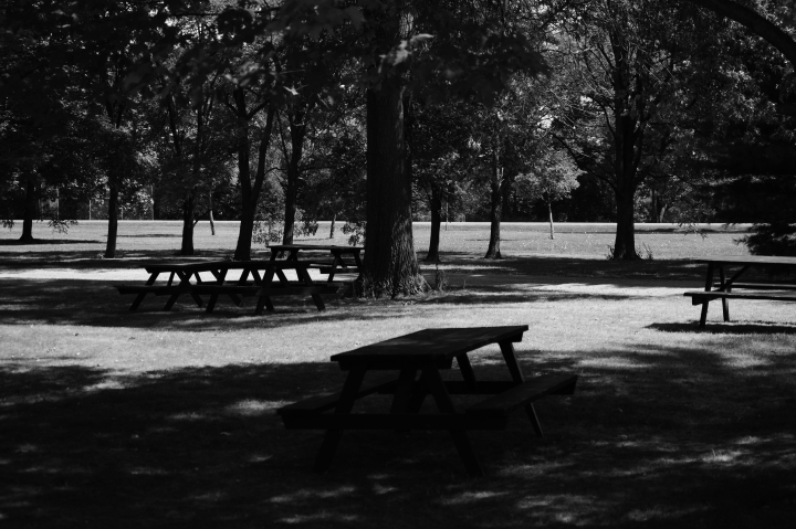 A solitary, lover-less park at Niagara by the lake...just adds to the beauty.